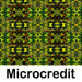 microcredit quotes